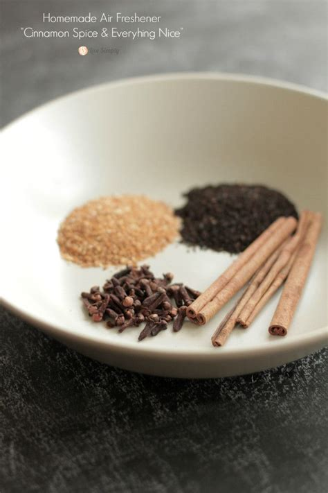 Air Freshener On Stove Cinnamon Spice And Everything Air Freshener Recipe