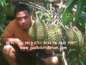 Jual Bibit Durian Bawor Cangkokan gambar mudah menanam pohon durian montong cepat berbuah
