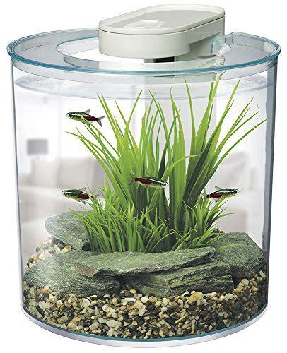 acheter aquarium acheter un aquarium comment choisir jardingue
