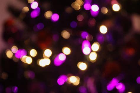 Kostenlose foto : Baum, Licht, Bokeh, verwischen, Nacht