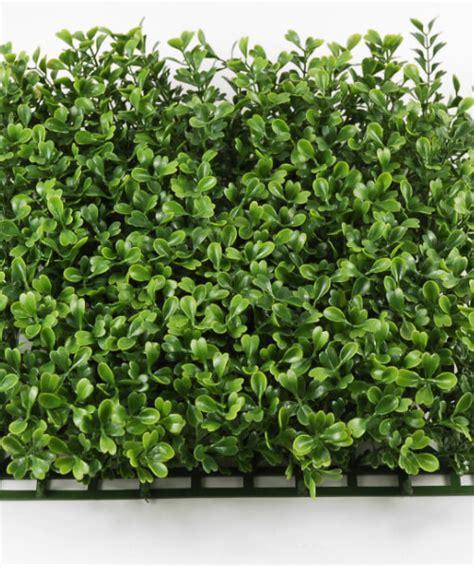 10 x 10 succulent mat artificial boxwood mat 10x10 interlocking