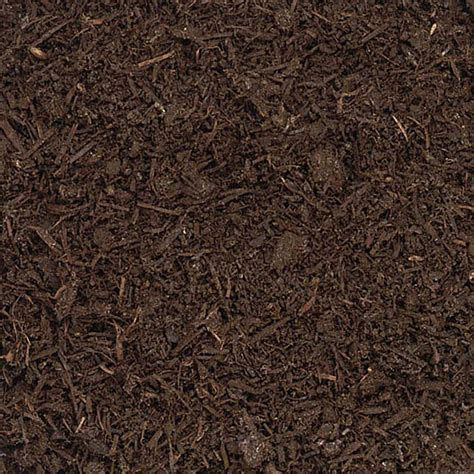 related keywords amp suggestions for mulch texture