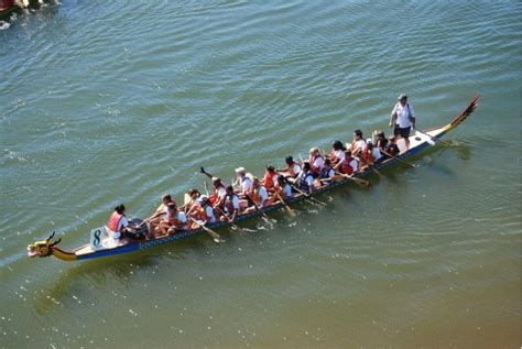 dragon boat festival gainesville faq gainesville says folks have lots of questions abou