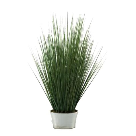 Grasses In Planters by Rent Flowers For Home Staging Flower Rentals For Home