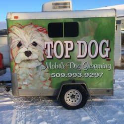 grooming spokane lucky mobile grooming pet groomers spokane wa phone number yelp