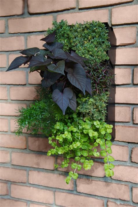 vertical garden materials 28 images how to grow