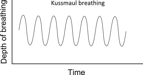 pattern breathing definition opinions on kussmaul breathing