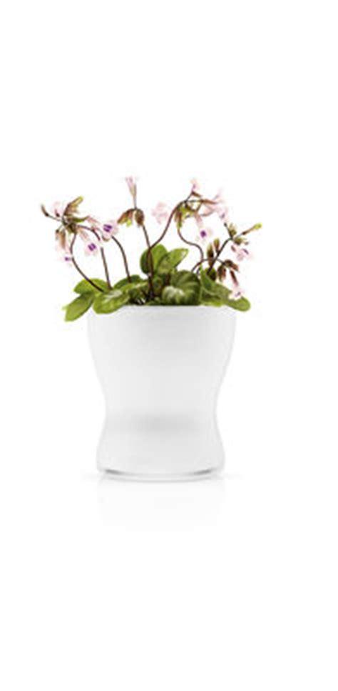 vasi con riserva d acqua scopri vaso con riserva con riserva d acqua 216 11 cm