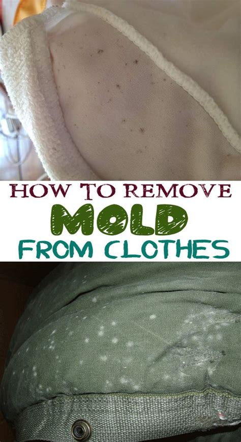 how to get mold out of clothes stains the o jays and clothes on
