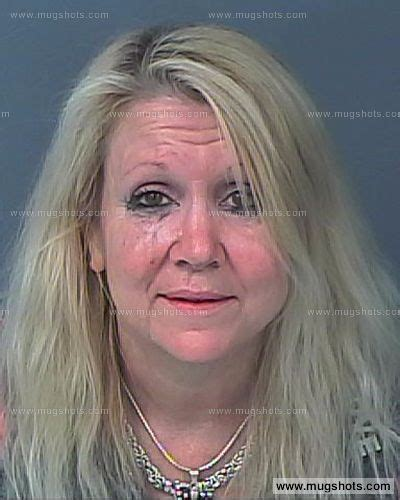 Hernando Clerk Search Hernando County Arrest Records Images