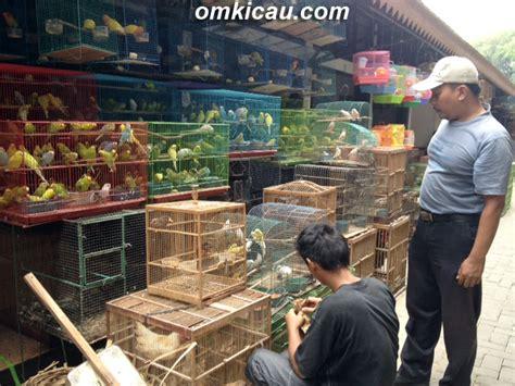 Kursi Roda Baru Di Pasar Pramuka wajah baru pasar burung depok klub burung
