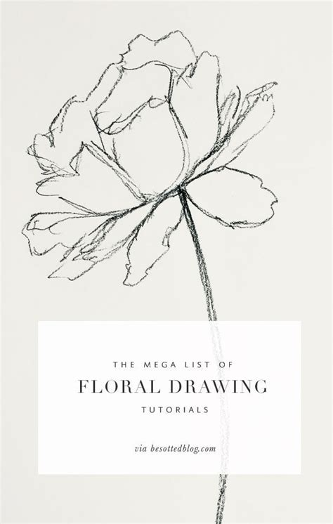 line art tutorial tumblr 25 best ideas about floral drawing on pinterest draw