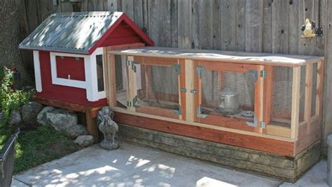 Best Backyard Chicken Coop 1000 Images About Raising Leghorn Chickens On Best Chicken Coop Backyard Chickens