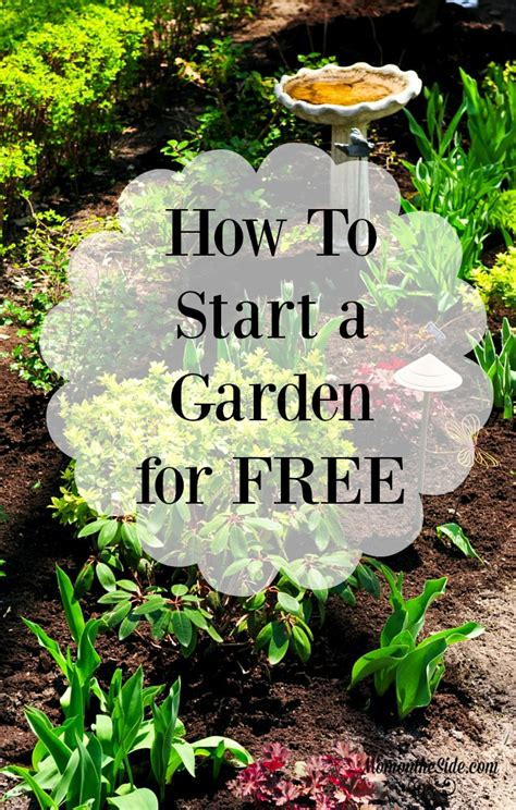 how to start a garden bed how to start a garden in your backyard 28 images