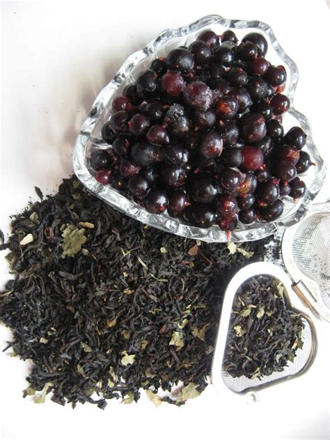 Blackcurrant Tea Buy Black Currant Tea Benefits Side Effects How To Make
