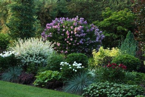 perennial garden ideas 1000 ideas about perennial gardens on