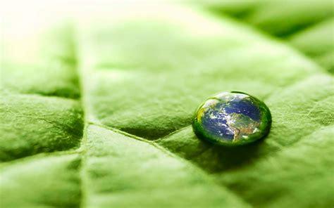 Wallpaper For Green Environment | green environment wallpaper 214655
