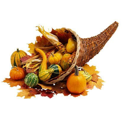 thanksgiving cornucopia other special days pinterest