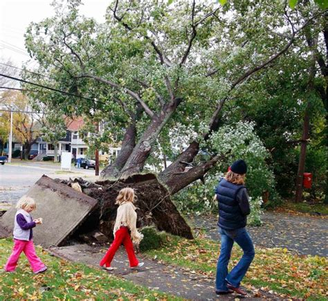 haircut quinpool halifax photos worst storms to hit canada