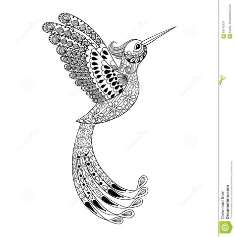 zentangle hand drawn artistically hummingbird flying bird