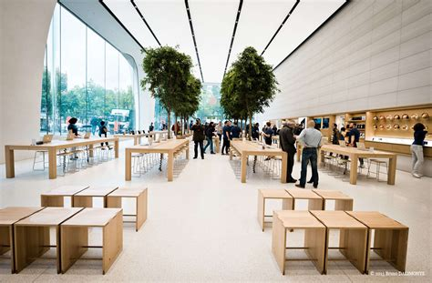 store tree jony ive s vision for new apple stores live trees cult