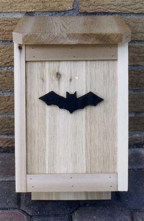 pipistrello le bat box pipistrelli contro le zanzare focus it