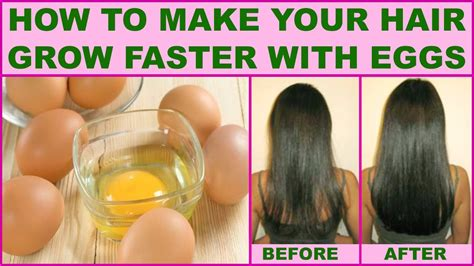 how to make your hair grow faster how to make your hair grow faster with eggs youtube