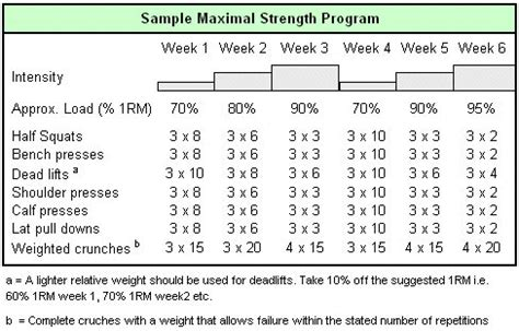 bench training program weight training programs for maximal strength