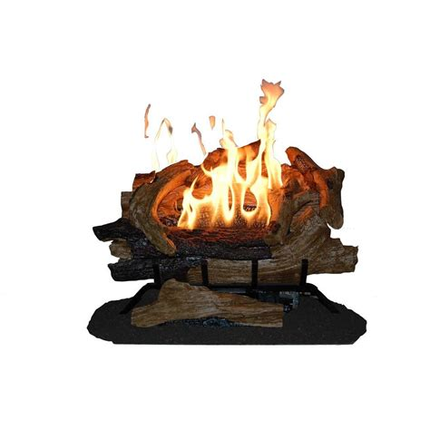 Emberglow Vent Free Fireplace by Emberglow American Elm 24 In Vent Free Propane Gas Fireplace Logs Aevf24falp The Home Depot