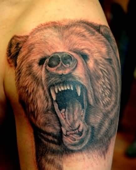 bear face tattoo grizzly www pixshark images