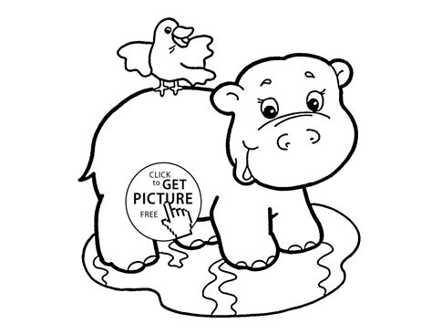 Baby Animal Coloring Pages by Baby Hippo Coloring Page For Baby Animal Coloring