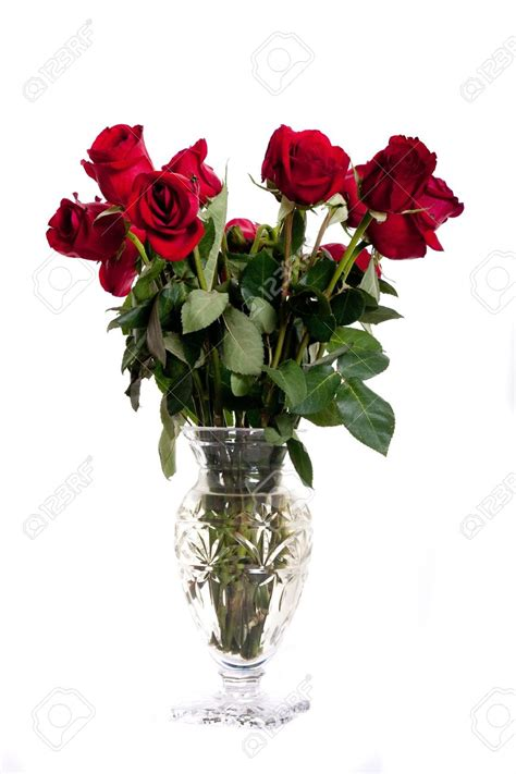 Vases Of Roses by Vases Design Ideas Vase Of Roses And Other Flowers The