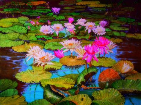 lotus flower pad pads and lotus flowers hd wallpaper and