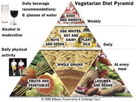 vegetarians images vegetarian food pyramid wallpaper and background photos 572496