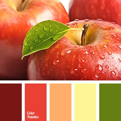 apple colors apple color color palette ideas