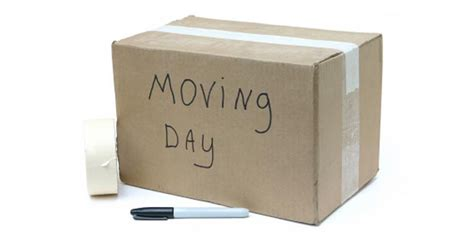 stuff to buy for a new house 5 things to do when moving into a new home comfree blogcomfree blog