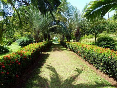 St Vincent Botanical Gardens Panoramio Photo Of St Vincent Karibik Botanical Garden Of Kingstown