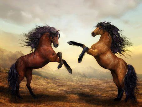 horse images · pixabay · download free pictures