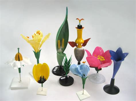 flowermodels com flower models manufacturers flower models exporters