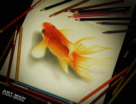 gold color pencil gold fish colored pencil drawing by jerome