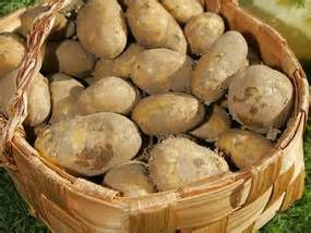 Potato Investment by Potato Firm Hopes To Reap 163 15m In Listing City