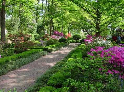 Arboretum Landscape And Design Us National Arboretum Garden Washington