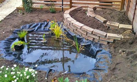 how to create a backyard pond how to build a garden pond