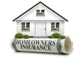 the best home and pet insurance quotes to save you