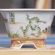 vasi per bonsai economici attrezzi e vasi per bonsai