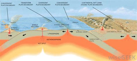 Fitness Landscape Theory Definition What Is Geothermal Energy With Pictures