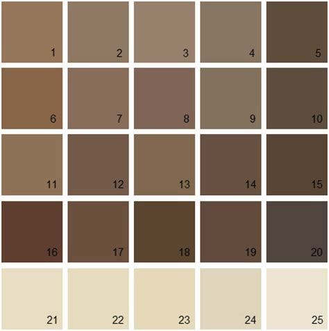 shades of brown paint brown paint color palette www pixshark images galleries with a bite