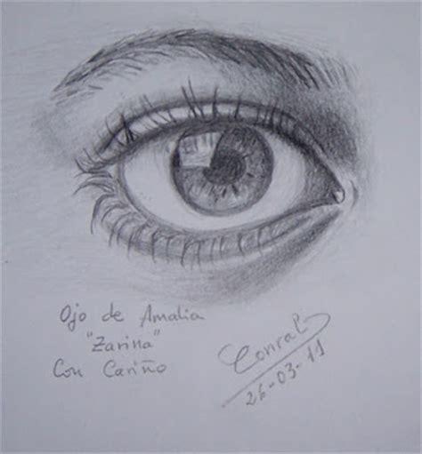 imagenes de ojos con flores sue 241 os que despiertan bocetos a l 225 piz rosas y ojo