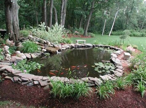 backyard pond care best location for a garden pond