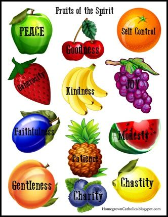 7 fruits of the holy spirit and their meanings homegrown catholics st brigids academy forever